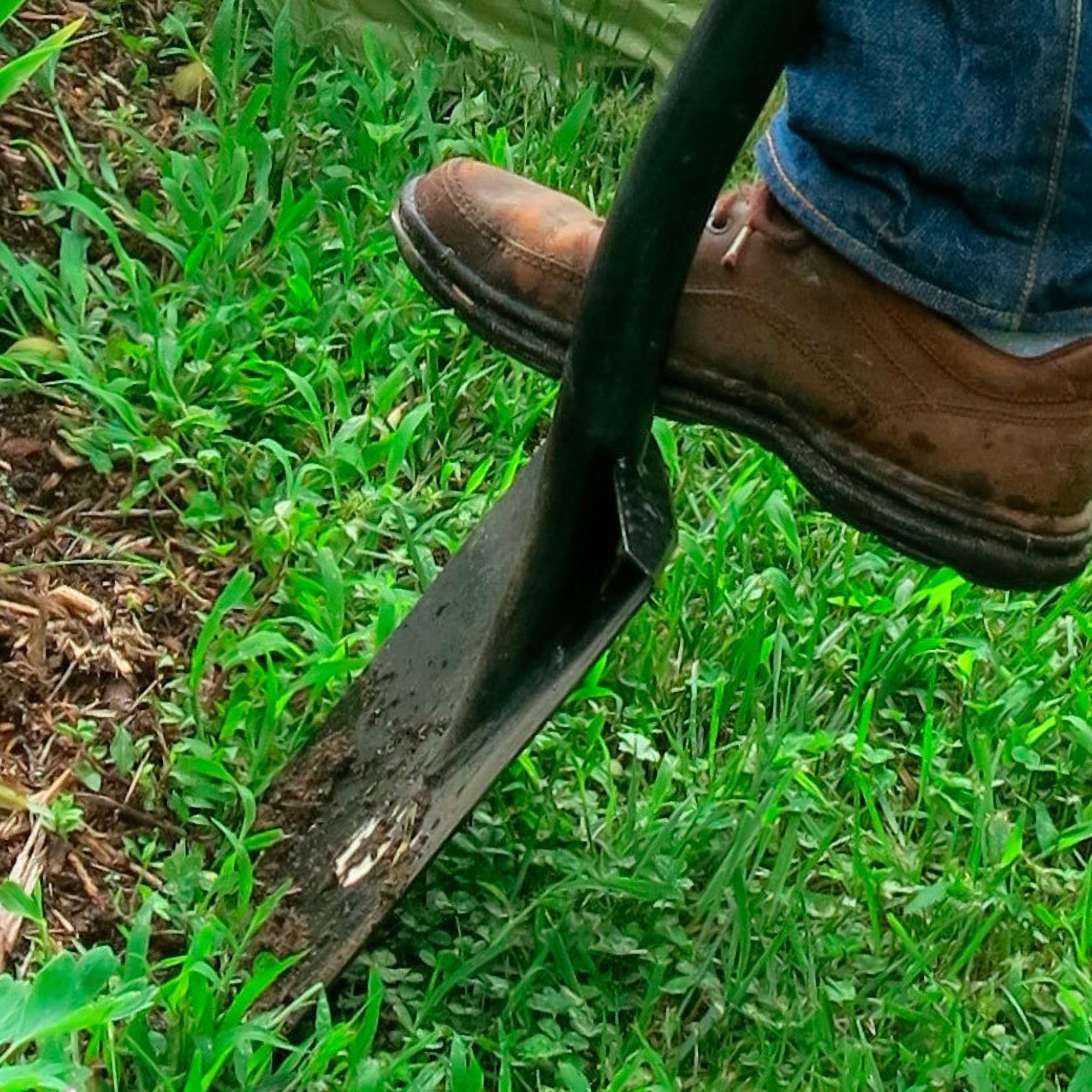 Picture of: Edge Your Garden Like A Pro