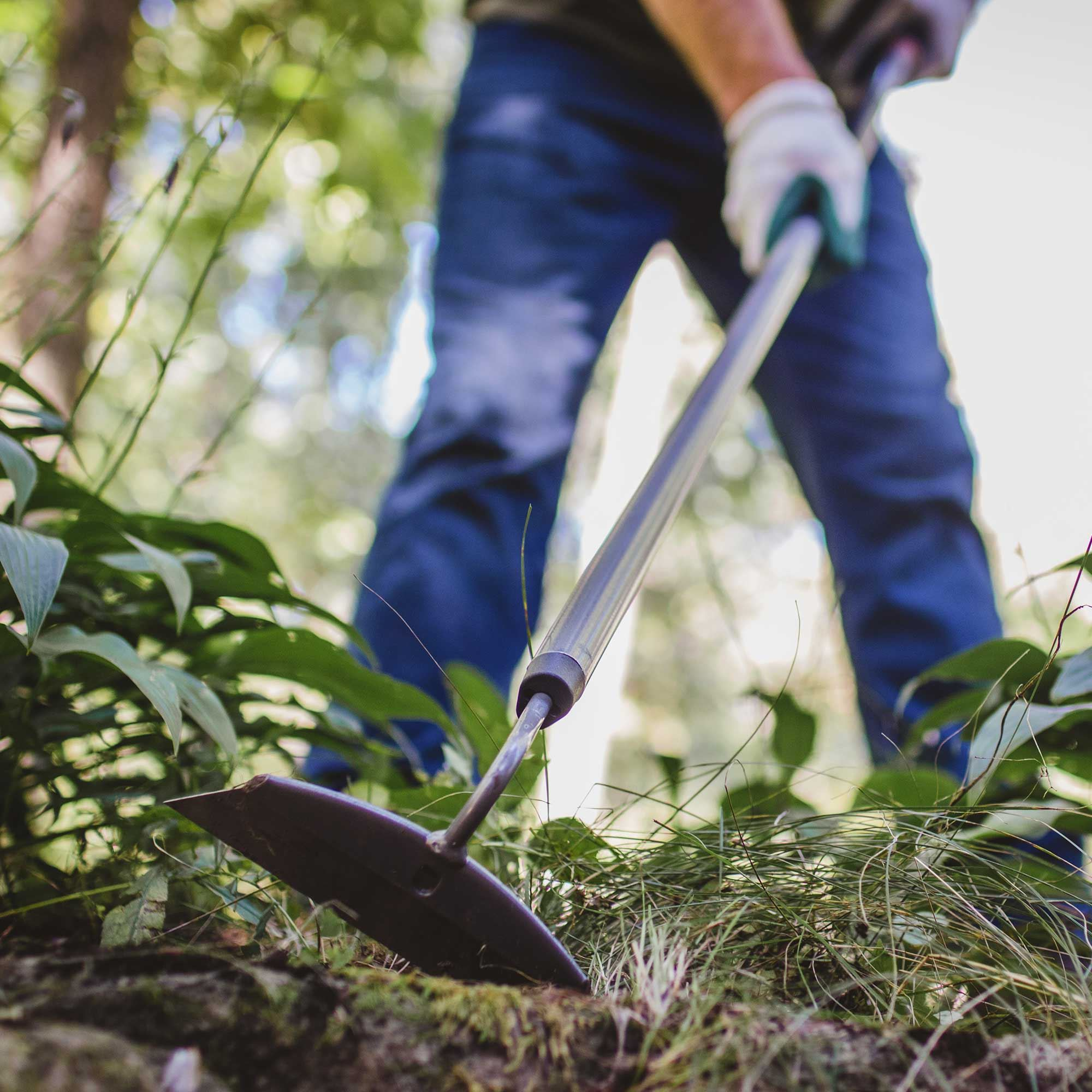 Weeding 101: How To Weed Your Garden