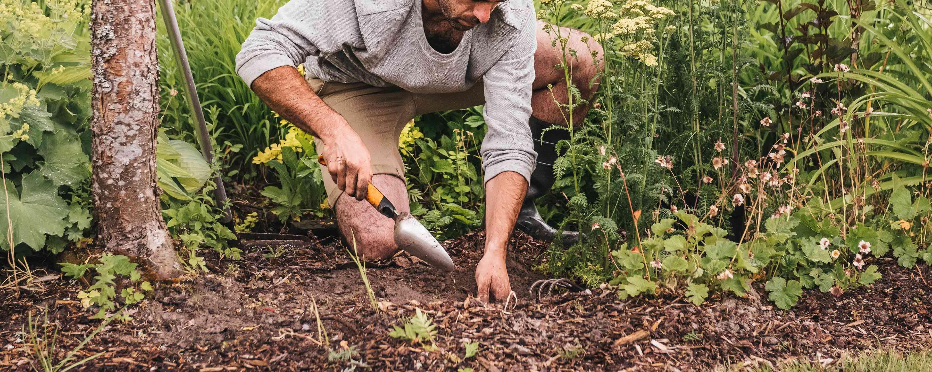 Planter Herbes Aromatiques Jardiniere outils pour planter